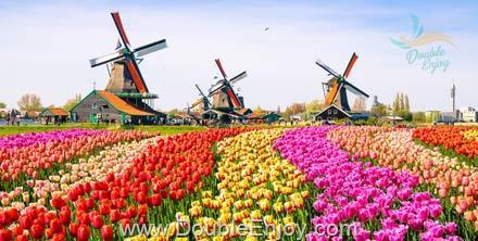 DE597 : ทัวร์ยุโรป ฝรั่งเศส เบลเยียม เนเธอร์แลนด์ เยอรมนี เทศกาลดอกไม้เคอเคนฮอฟ 9 วัน 6 คืน (TG)
