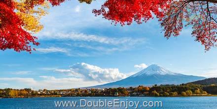 DE608 : ทัวร์ญี่ปุ่น โตเกียว ฟูจิ โอบาระ [ซากุระบานพร้อมใบไม้เปลี่ยนสี+เทศกาลประดับไฟ] 6 วัน 3 คืน (XJ)