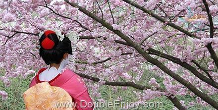 DE689 : โปรแกรมทัวร์ญี่ปุ่น ภูเขาไฟฟูจิ ชมดอกซากุระสวนอุเอโนะ 5 วัน 3 คืน (XW)