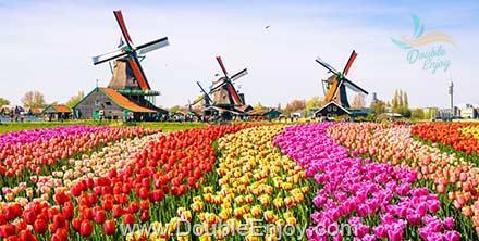 DE401 : ทัวร์ยุโรป ฝรั่งเศส เบลเยี่ยม เนเธอร์แลนด์ งานเทศกาลดอกไม้ 9 วัน 6 คืน (TG)