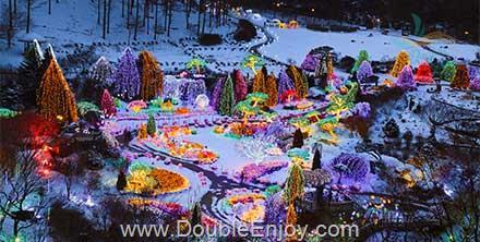 DE964 : โปรแกรมทัวร์เกาหลี ลานสกี เทศกาลประดับไฟ THE GARDEN OF MORNING CLAM 5 วัน 3 คืน (XJ)