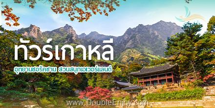 DE833 : โปรแกรมทัวร์เกาหลี นามิ ซอรัคซาน สวนสนุกเอเวอร์แลนด์ เมียงดง 5 วัน 3 คืน (KE)