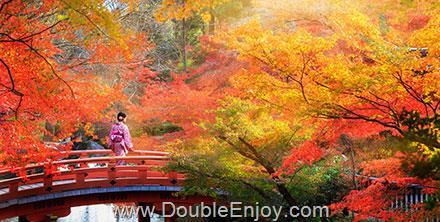 DE277 : โปรแกรมทัวร์ญี่ปุ่น เซนได ฟุคุชิมะ ชมใบไม้เปลี่ยนสี 5 วัน 3 คืน (TG)