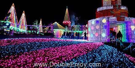 DE834 : ทัวร์ญี่ปุ่น โตเกียว คามาคูระ เล่นสกี เทศกาลประดับไฟ ได้รักสมใจที่เกาะมังกร 5 วัน 3 คืน (XW) [เทศกาลปีใหม่]