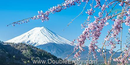 DE957 : โปรแกรมทัวร์ญี่ปุ่น โตเกียว ฟูจิเท็น [Option ดิสนีย์แลนด์] 5 วัน 3 คืน (SL)