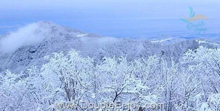 DE745 : ทัวร์เฉินตู ปาจง อุทยานภูเขากวงวู่ซาน อลังการนครหิมะอันบริสุทธิ์ 5 วัน 2 คืน (8L)
